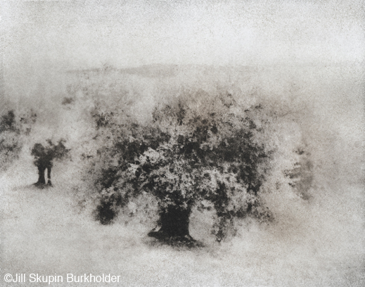 Bromoil print by Jill Skupin Burkholder, at Sun to Moon Gallery