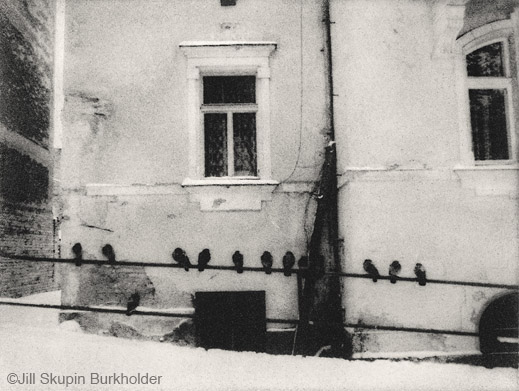 """Pigeons on Rail"" photograph by Jill Skupin Burkholder, at Sun to Moon Gallery"