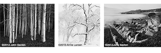 Fine photographs by Anne Larsen & John Sexton, at Sun to Moon Gallery, Dallas, TX