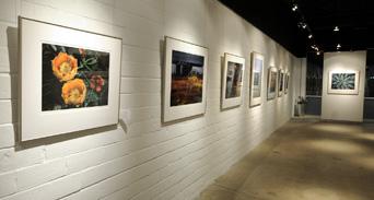 ... Sun To Moon Gallery Interior